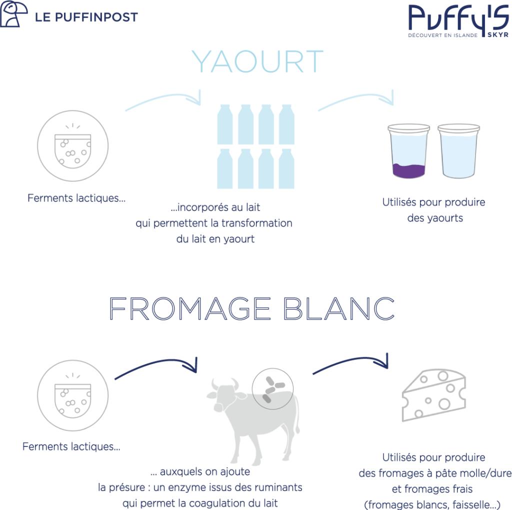Quelle différence entre yaourt et fromage blanc ?