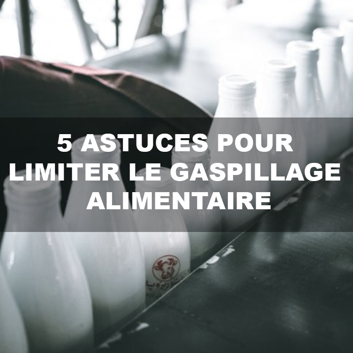 puffinpost gaspillage alimentaire