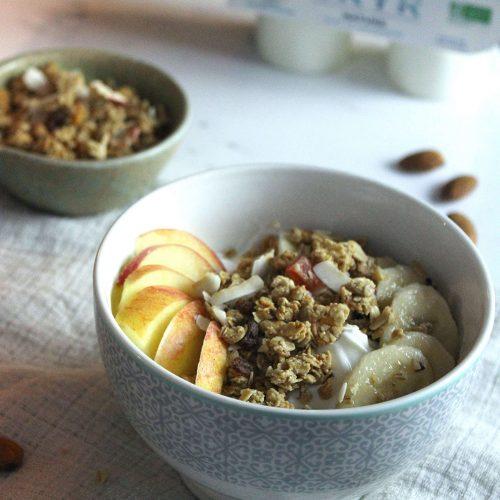 Yogurt bowl : un bol de SKYR au granola et fruits